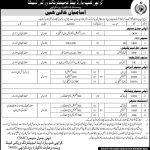Karachi Shipyard And Engineering Works Limited Jobs 31 Mar 2019