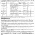 NTS  Office Of The Deputy Commissioner 02 Apr 2019 Jobs