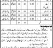 College Education Department Govt Of Sindh Jobs 25 May 2019