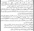 Irrigation Department Govt Of Sindh Jobs 25 May 2019
