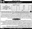 NTS Walled City Of Lahore Authority Jobs 25 May 2019