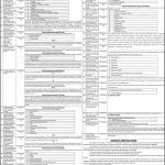 Bahauddin Zakariya University BZU Jobs 29 Jun 2019