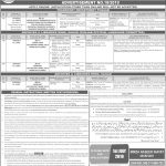 Punjab Archives And Libraries Department Via PPSC Jobs 17 Jun 2019