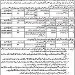 Punjab Employees Social Security Jobs 19 Jun 2019