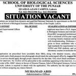 School Of Biological Science University Of The Punjab (PU) Jobs 18 Jun 2019