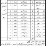 Health Department Govt Of Sindh Jobs 08 July 2019