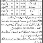 Irrigation Department Sukkur Jobs 28 Jul 2019