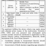 Labour And Human Resource Department Govt Of Sindh Jobs 11 Jul 2019