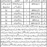 Office Of The Deputy Commissioner Jobs 22 Jul 2019