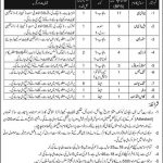 Pakistan Army Engineers Centre Riaslpur Cantt Jobs 07 Jul 2019