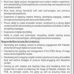 Pakistan Cricket Board (PCB) Jobs 12 Jul 2019
