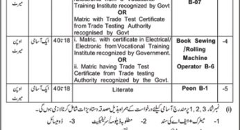 AJK Jobs 2019 for Government & Private Sector | Jobs in Azad
