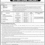 University Of Balochistan Quetta Jobs 31 Jul 2019