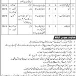 WAPDA Hospital Gujranwala Jobs 21 Jul 2019