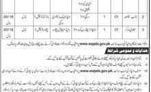 Water And Power Development Authority (WAPDA) Jobs 26 Aug