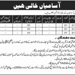 CMH Mardan Cantt 16 Aug 2019 Jobs