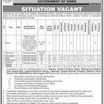 Culture Tourism And Antiquities Department Jobs 07 Aug 2019