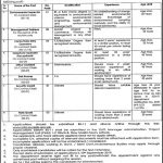 Energy Department Govt Of The Punjab Jobs 23 Aug 2019