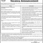 Finance Department Govt Of Sindh Jobs 29 Aug 2019