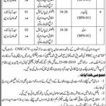 Irrigation Department Govt Of Sindh Jobs 24 Aug 2019