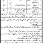 Irrigation Department Govt Of Sindh Jobs 30 Aug 2019