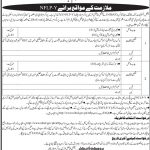 National Institute Of Banking And Finance Jobs 01 Aug 2019