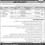 National Transmission And Despatch Company Limited Jobs 04 Aug 2019