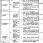 Wazirabad Institute Of Cardiology WIC Jobs 04 Aug 2019
