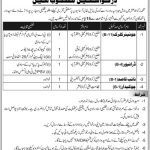 Zakat And Ushr Department AJK Jobs 03 Aug 2019