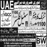 BW Overseas Employment Promoters Jobs 16 September 2019