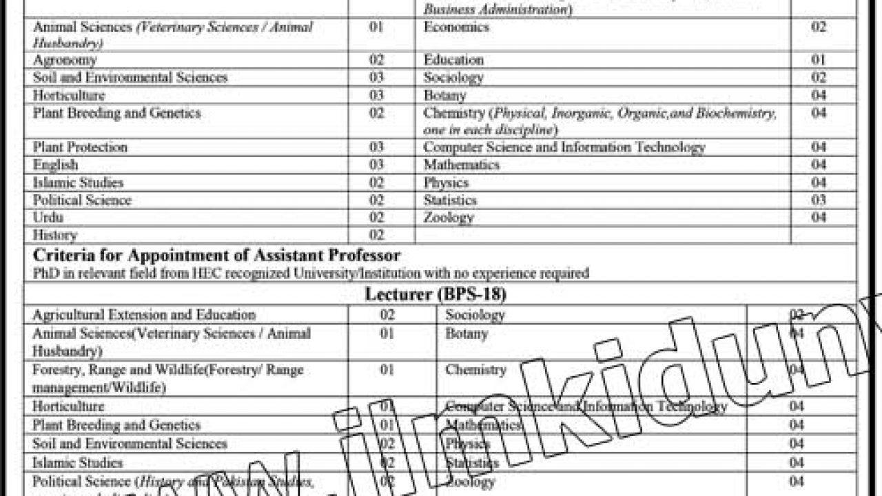 Ghazi University DG Khan Jobs 05 Sep 2019 - Prepistan Jobs