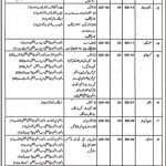 Mines And Minerals Department Jobs 08 Sep 2019