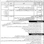 NTS  Ministry Of Housing Works Govt Of Pakistan Jobs 08 Sep 2019