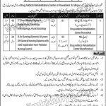 Population Welfare Department Jobs 05 Sep 2019