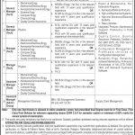 Public Sector Organization Islamabad Jobs 04 Sep 2019