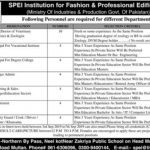 SPEI Institution For Fashion And Professional Edification Jobs 03 Sep 2019