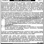 The Bank Of Punjab Jobs 07 Sep 2019