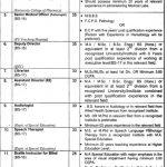 University Of The Punjab PU Jobs 01 Septemeber 2019