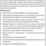 Pakistan Cricket Board (PCB) Jobs 04 Oct 2019