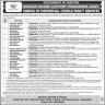 Benazir Income Support Program Govt Of Pakistan Jobs 14 November 2019
