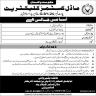 Model Customs Collectorate Govt of Pakistan Jobs 06 November 2019