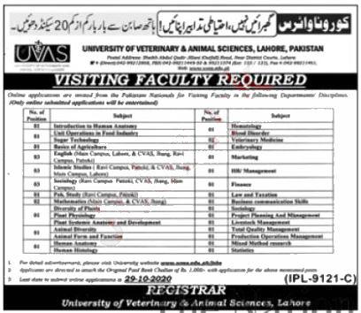 Jobs in UVAS University Lahore for Visiting Professors 22 October, 2020