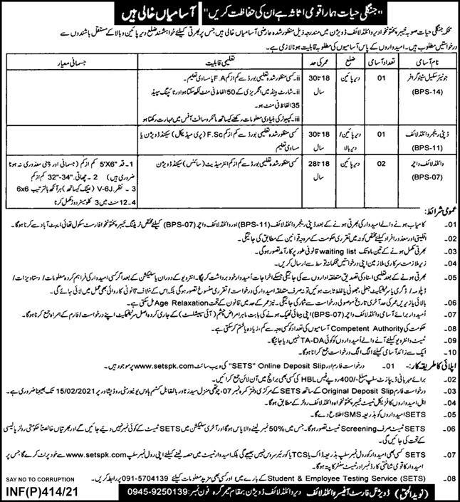 Stenographer Jobs in Wildlife Department Khyber Pakhtunkhwa 26 Jan 2021