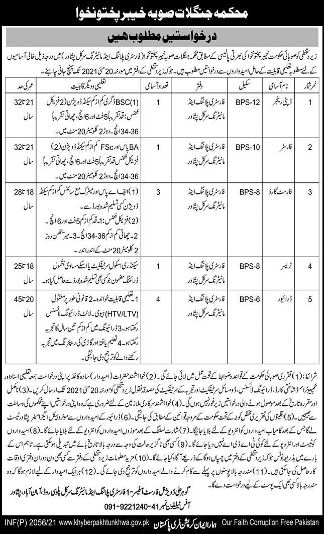 Jobs in Forest Division For Management Staff in Peshawar KPK 2021