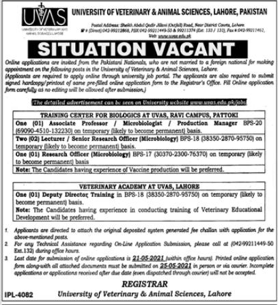 Jobs in University of Veterinary and Animal Sciences UVAS in Lahore & Pattoki 2021