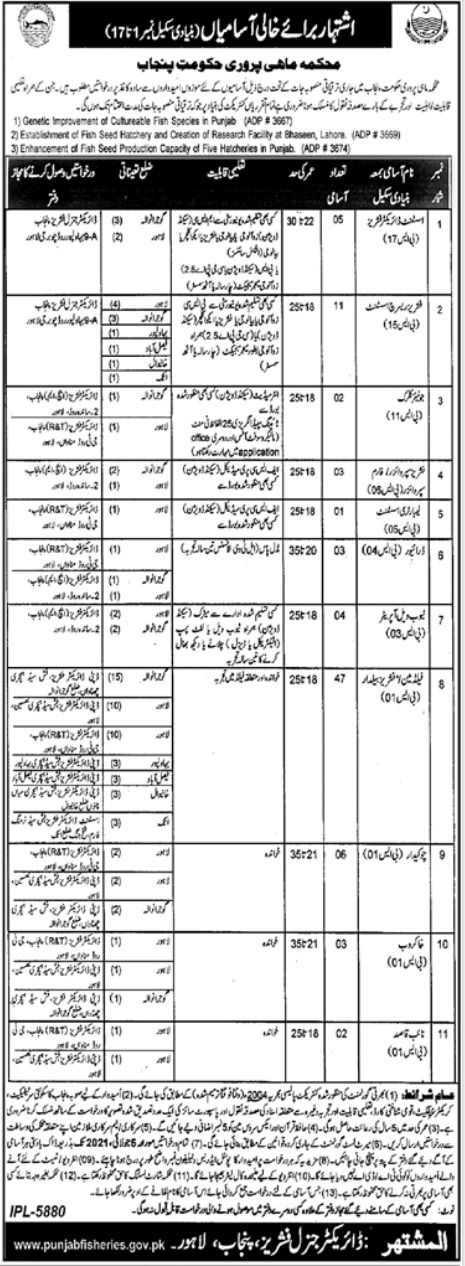 Jobs in Fisheries Department For Management Staff 2021